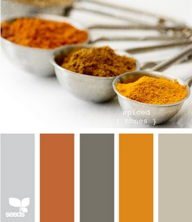 Orange you glad design loft the design blog of for Pumpkin spice paint living room